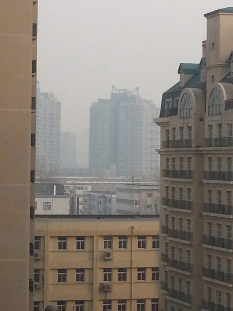 The view from our window at 385 pollution count